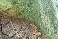 Seashore kamień i płycizny jasny morze Zdjęcie Stock