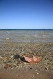 Seashore - Lake Huron Royalty Free Stock Image
