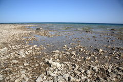 Seashore - Lake Huron Royalty Free Stock Photography