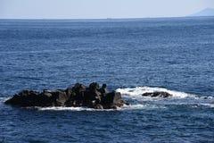 Seashore landscape White waves royalty free stock image