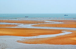 Seashore of Liangyungang of China. This is place where laver are grown very well,the beach is beautiful in the morning Stock Photo
