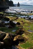 Seashore during the low tide Royalty Free Stock Image