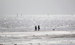 Seashore at low tide. Stock Photography