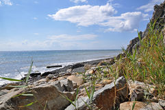 Seashore Royalty Free Stock Photography