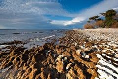 Seashore near Zadar Stock Image