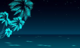 Seashore night promenade sea vacation. Romantic date wedding travel leisure sandy coast starry sky. Palm beach ocean Royalty Free Stock Photo