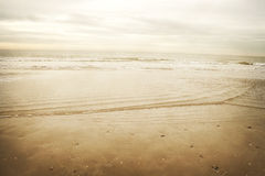 Seashore in the north sea Stock Images