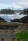Seashore in pacific rim stock photos