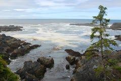 Seashore in pacific rim royalty free stock images