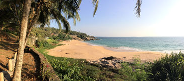 The seashore with palm trees. India. Kerala. Royalty Free Stock Photo