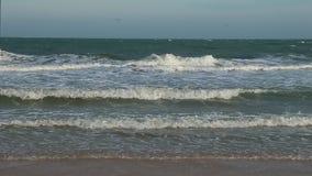 Seashore panorama to horizon. Seashore panorama. Tranquil idyllic scene of a green waves and blue sky sea. Waves slowly splashing on sand. Relaxing atmosphere stock footage