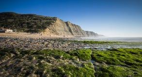 Seashore Royalty Free Stock Photo