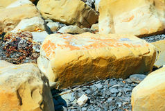 Seashore Rocks. Rocks and Stone on seashore at Kimmeridge Dorset UK Royalty Free Stock Photos