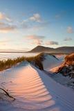 Seashore sand dune. Windblown sand dune along seashore at dusk Royalty Free Stock Photos