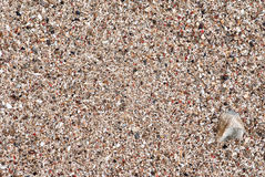 Seashore sand and gravel. Seashore sand and multicolored gravel mixed with shells Royalty Free Stock Images