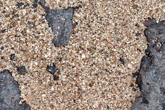Seashore sand, gravel and rock. Seashore sand, multicolored gravel mixed with shells, rock. Copyspace for text Stock Photography