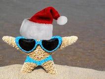 Seashore Santa. Cute starfish wearing a santa hat and sunglass on the seashore Stock Image