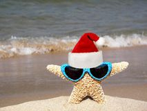 Christmas starfish with hat Royalty Free Stock Photo