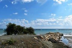 Seashore. With a beautiful blue sky Royalty Free Stock Photos