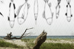 Seashore through a fishnet Stock Images