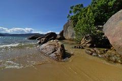 Seashore selvagem Fotografia de Stock