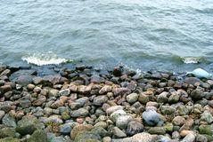 Seashore royalty free stock photos