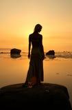 Seashore silhouette Stock Image