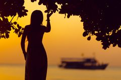 Seashore Silhouette and Sunset stock photography