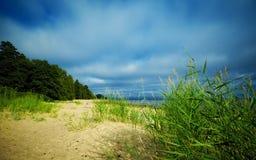 Seashore sob o céu azul Imagens de Stock Royalty Free