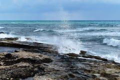 Seashore. With a splashing wave Stock Image