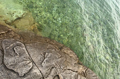 Seashore stone and shallow clear sea. Detailed view of seashore with stone surface and clear transparent shallow sea stock photo