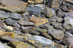 Seashore Stone Texture. Seashore stones and pebbles while tide is out Royalty Free Stock Photography