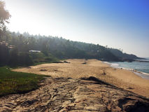 Seashore with stones and palm trees. India. Kerala. Stock Images