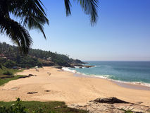 The seashore with stones and palm trees. India. Kerala Stock Photos