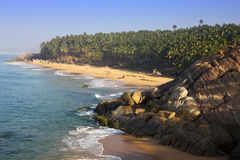 The seashore with stones and palm trees. India. Kerala Royalty Free Stock Image