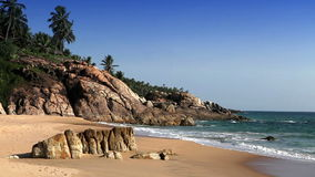 The seashore with stones and palm trees. India. Kerala stock footage
