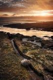 Seashore Sunset Royalty Free Stock Image