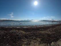 Seashore and sunshine Stock Photos