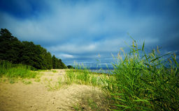 Seashore under blue sky Royalty Free Stock Images