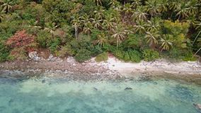 Seashore of Uninhabited Island Overgrown with Palm Trees stock footage