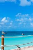 seashore wakacje Zdjęcia Stock