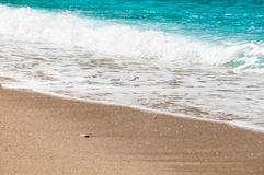 Seashore, waves and sandy beach. Nature Royalty Free Stock Photography