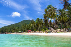 Seashore with white sand and palm trees Royalty Free Stock Photo