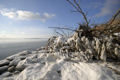 Seashore winter in Denmark Royalty Free Stock Photo