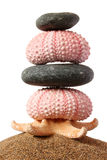 Seashore Zen Stack Royalty Free Stock Photo