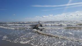 seaside Imagem de Stock