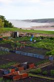 Seaside Allotment Stock Photography