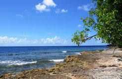 Seaside of Anse Bertrand in Guadeloupe Royalty Free Stock Photography