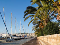 Seaside bicycling route. PALMA DE MALLORCA, BALEARIC ISLANDS, SPAIN - DECEMBER 22, 2015: Seaside bicycling route along the Mediterranean on a sunny day on Stock Images