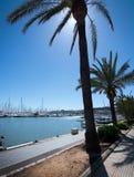 Seaside biking route with marina and palm trees. PALMA DE MALLORCA, BALEARIC ISLANDS, SPAIN - APRIL 13, 2016: Seaside biking route with marina and palm trees on Royalty Free Stock Image